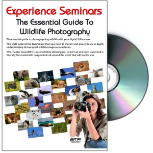 Essential Guide to Wildlife DVD