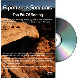 Art of Seeing DVD - Experience Seminars